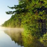 Продажа участка на Браславских озерах 5